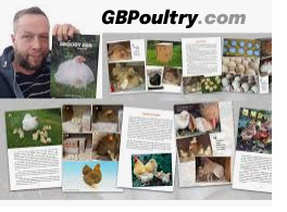 GBPoultry.com